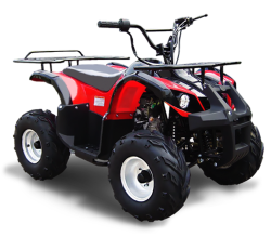 Квадроцикл Omaks ATV SP 206