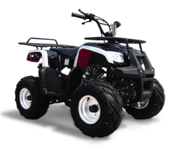 Квадроцикл Omaks ATV SP 302